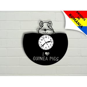 Ceas porcusor de Guineea